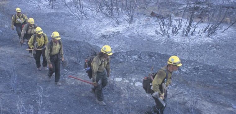 Fire fighters crossing charred terrain, Los Angeles Padres National Forest, California shutterstock  photo ID: 177444584 By Joseph Sohm
