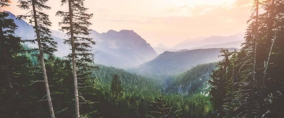 scenic view from mt rainier view point,mt Rainier,Washington,usa.